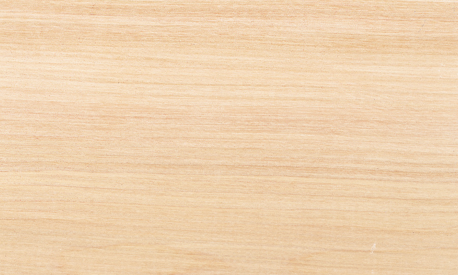 Species Yellow Birch - Hardwood Lumber products - Champeau The Hardwood Company