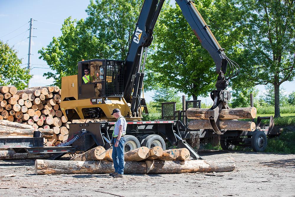 logs_quality_sawmill_red_oak_maple_soft_rock_componenents_billets