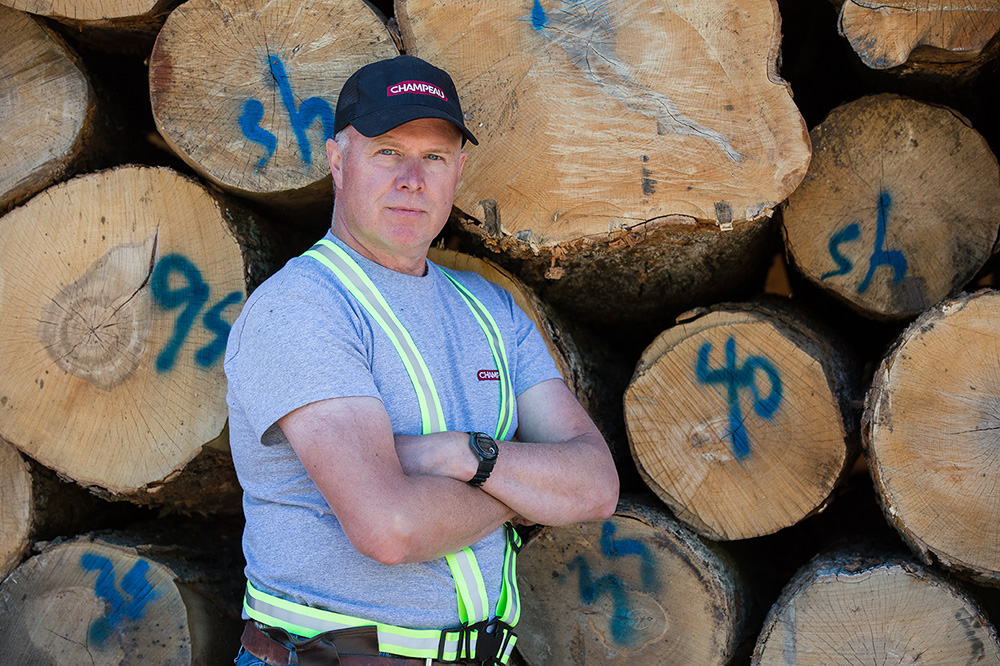 Hard_maple_log_sawmill